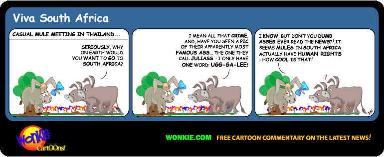 Human Rights for Drug Mules – a Wonkie Donkey Cartoon image