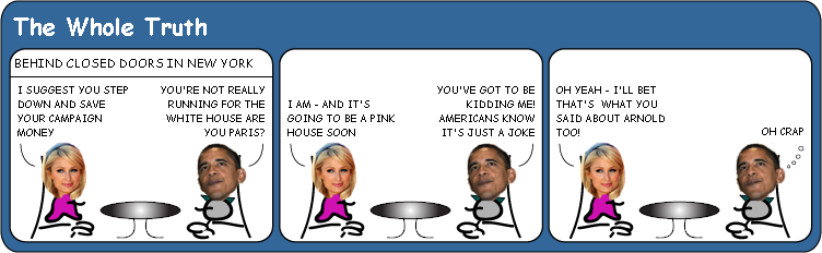 Paris Hilton runs for US president cartoon