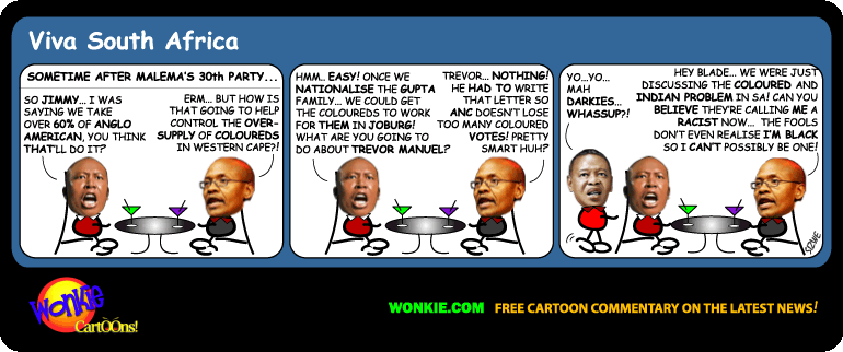 Jimmy Manyi Black Racists cartoon