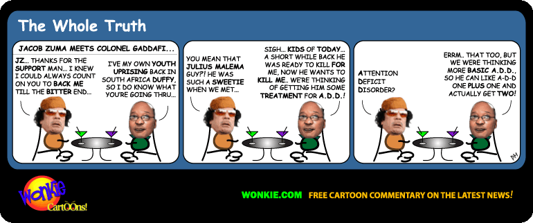 South Africa Libya Intervention cartoon