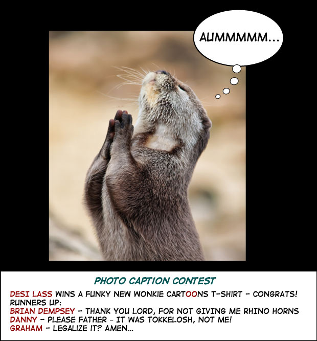 rodent prayer photo caption cartoon