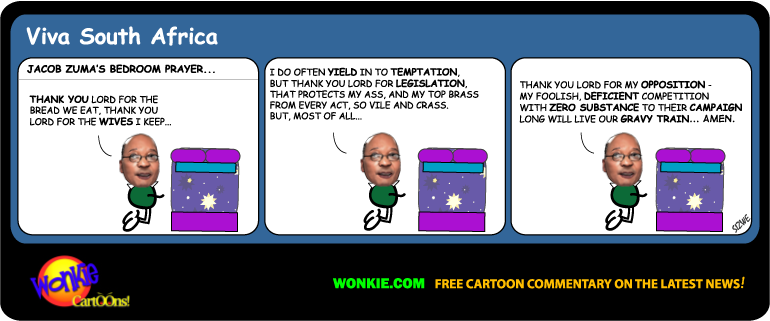 South Africa 2014 elections cartoon