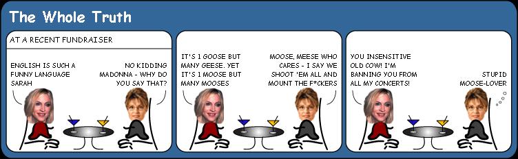 Madonna bans Sarah Palin from concerts cartoon