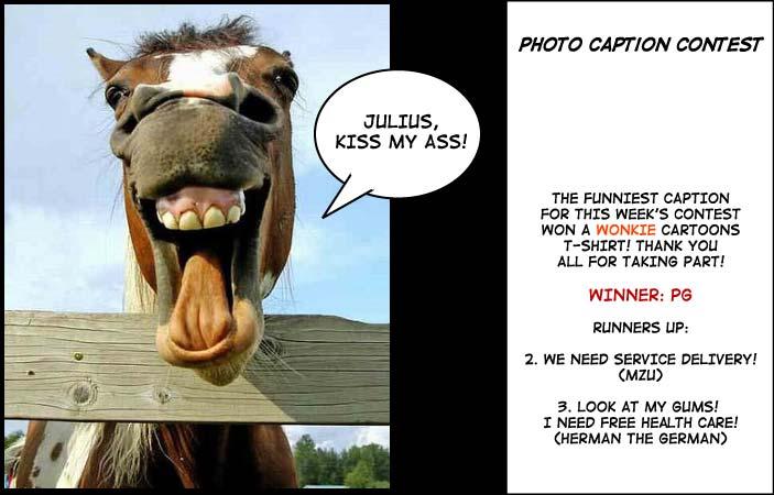 Talking horse photo caption