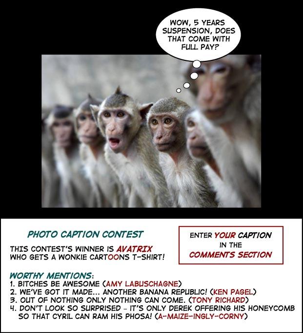 Monkey do Monkey see photo cartoon