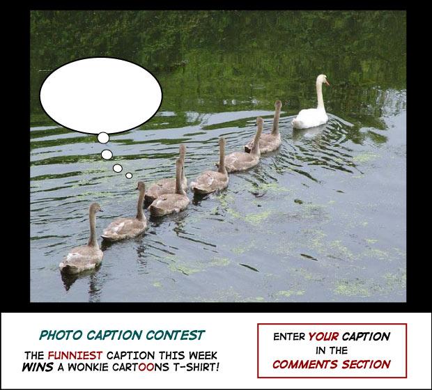 Follow the Leader photo caption contest